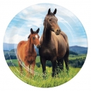 "Horse and pony 7"" Lunch Plates / 8"