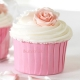 Pink Baking Cups / 24